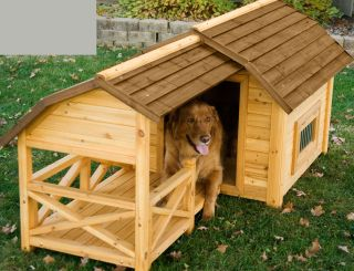 Wooden Dog Houses Versus Plastic Houses Which to Choose