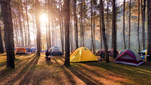 The 4 Best Places To Camp in the East Bay