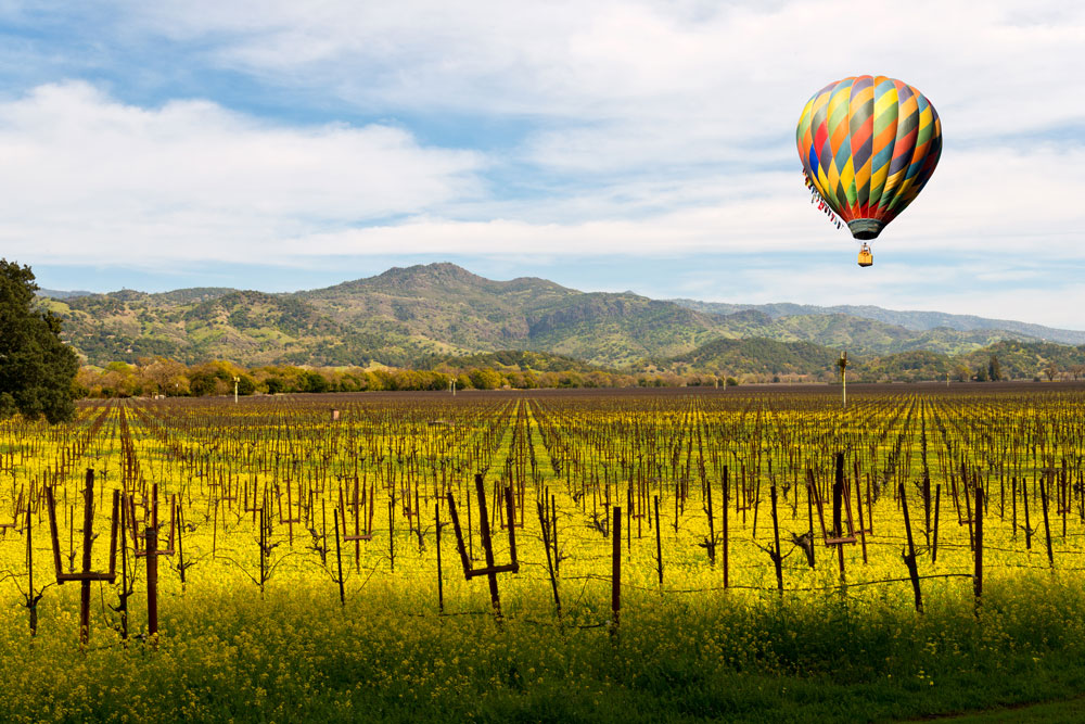Napa hot air balloon soaring over vineyard.