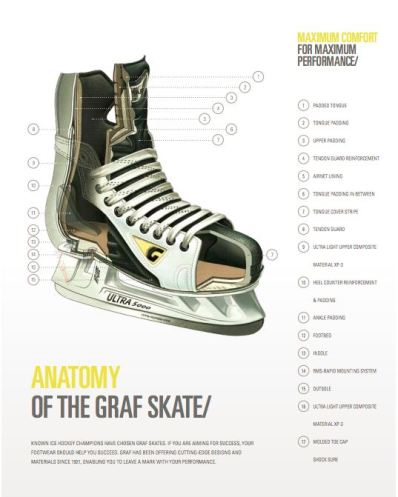 Anatomy of graf skate