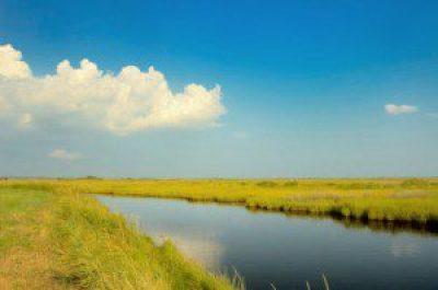 deal-island-wildlife-manage