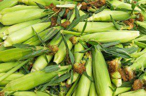 farm-market-3