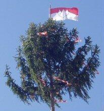 Frankenfahne auf dem Kirchweihbaum