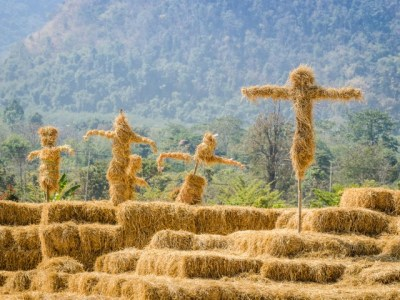 Straw Men Revised