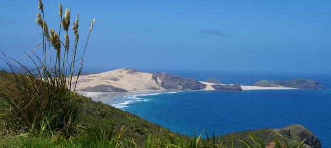 Neuseelands Nordinsel: Ninety Mile Beach, Cape Reinga, Hokianga und Auckland