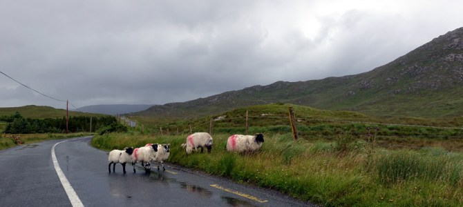 Roadtrip durch Irland: von Doolin nach Clifden