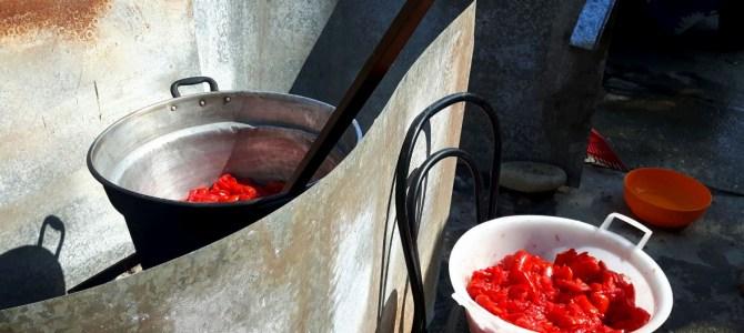 Birte bloggt: Zurück zu den Wurzeln – Tomatenpassata alla Calabrese