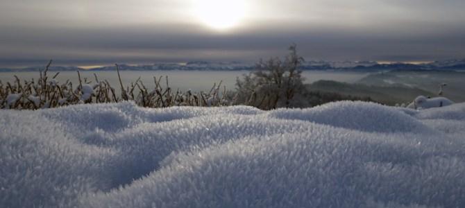 Winterwanderung am Zürcher Hausberg – vom Uetliberg nach Felsenegg