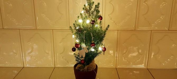 Frohe Weihnachten – und österreichische Weihnachtswünsche