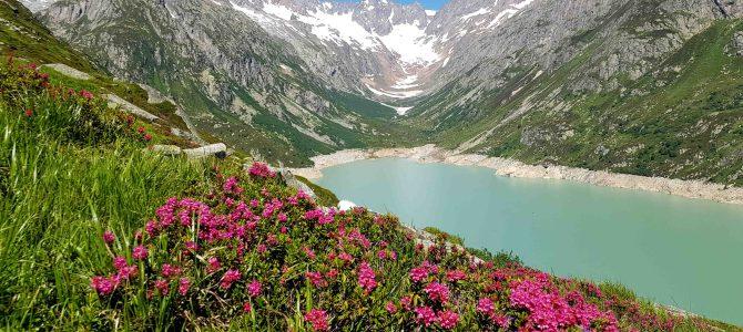 In der Schweiz unterwegs – Rundwanderung am Göscheneralpsee