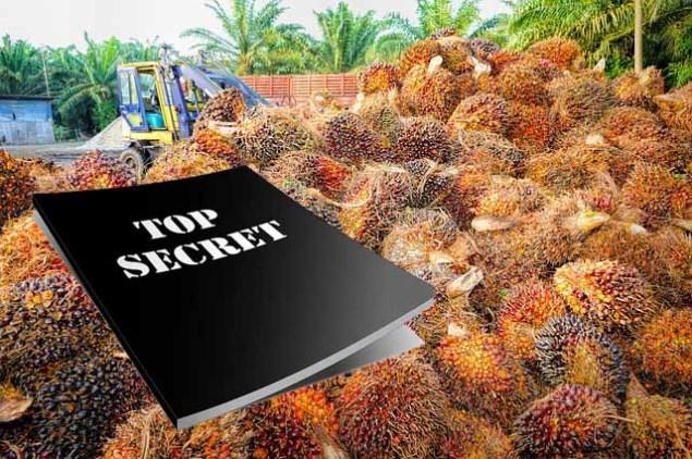Geheimdokumente über Palmöl Verhandlungen geleakt
