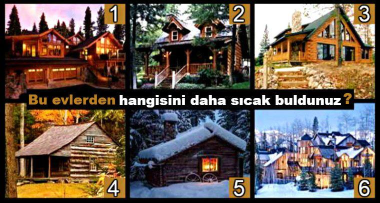 bu-evlerden-hangisini-daha-sicak-buldunuz-test-filoji-1.jpg