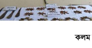বান্দরবানে বিপুল পরিমাণ অস্ত্র ও গোলাবারুদ উদ্ধার করেছে সেনাবাহিনী