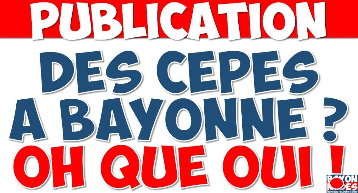 Des cèpes à Bayonne ?
