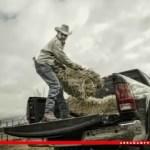 Farmer-ad