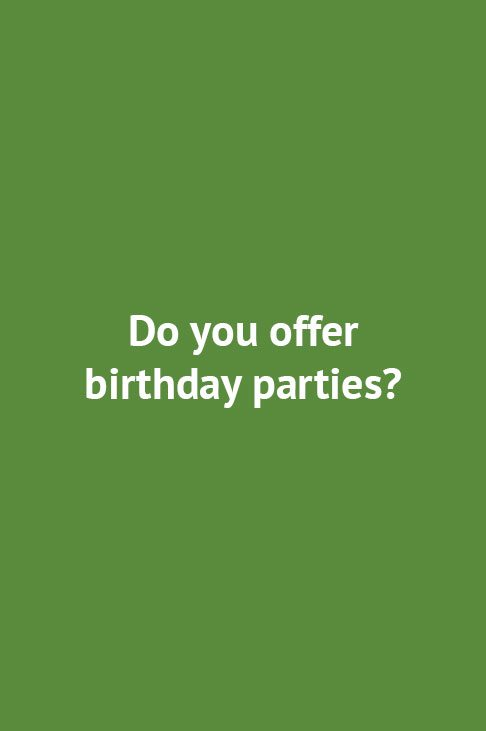 Do you offer birthday parties?