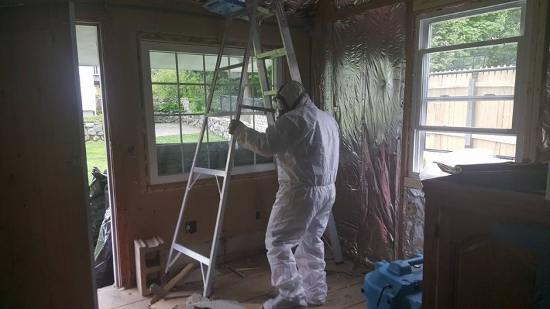 How Can I Decrease Exposure to Mold?