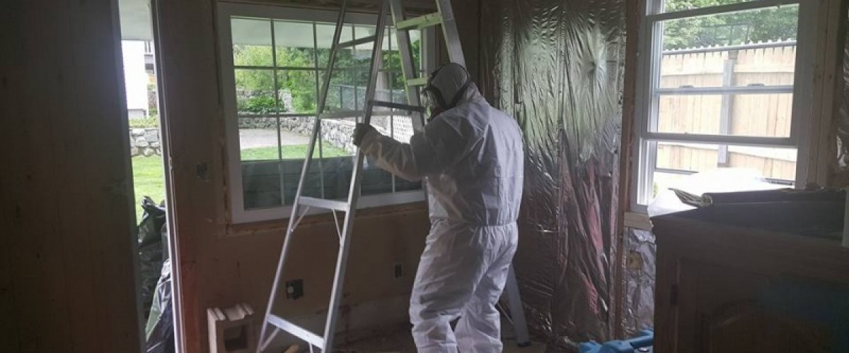 Mold removal specialist in hazmat suit