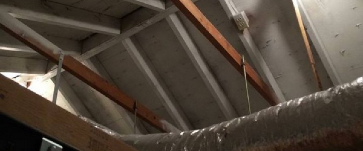 Attic mold removal for homeowner