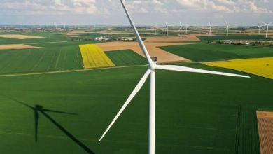 Photo of Global green energy growth to fall for first time in 20 years: IEA