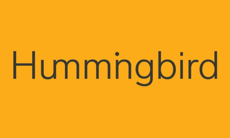 Hummingbird Ventures announced two new $ 200 million funds to invest in Turkish start-ups 1