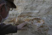 Mammoth fossil found in northwestern Turkey 10