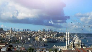 Turkey attracts $3.9B foreign investment in Jan-Aug 24