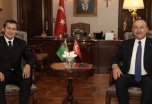 Ankara ready to do its part to bring Turkmen gas to Europe 10