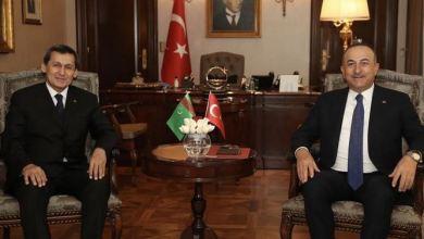 Ankara ready to do its part to bring Turkmen gas to Europe 22