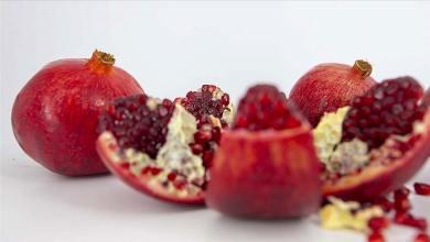 Turkey's pomegranate exports broke a record in 2020 26
