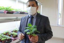 Turkish university develops COVID-19 vaccine candidate 3