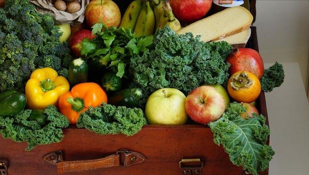 Turkey's fresh fruits and vegetables exports jump in Q1 1