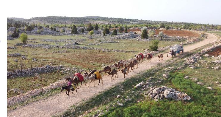 Nomadic Turks preserve lifestyle despite advancing technology 1