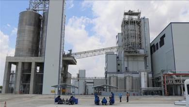 Construction works of giant petrochemical plant in Adana started 8