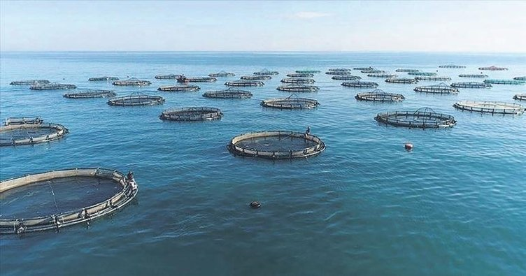 Fisheries exports reached $1.1 billion 1