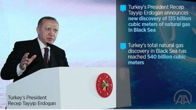Turkish president announces new gas reserves find in Black Sea 8
