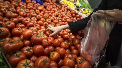 Turkey's annual inflation rate at 16.59% in May 9