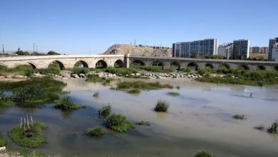 Turkey's longest river Kızılırmak hit by drought threat 9