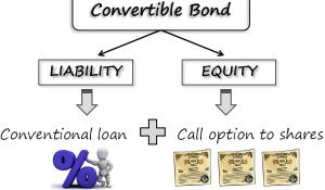 Warrants and Convertible Bonds