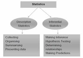 inferential statistics in business Statistical language - quantitative and qualitative data  264 employees, what  is the industry of the business retail  inferential statistics.