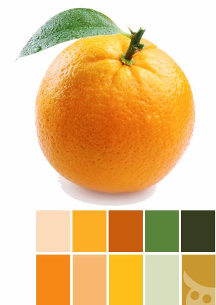 orange-03-palette