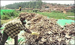 Ruanda em 94? quando mais de 800.000 pessoas de minorias étnicas foram assassinadas;