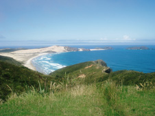 Bay and headland in New Zealand
