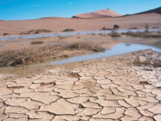The effects of drought in Namibia
