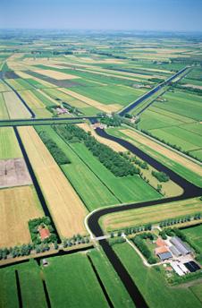 Farmland in Polder landscape, Friesland, Holland