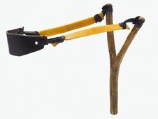 catapult stores elastic energy