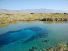 Poza Azul en Cuatro Ciénegas, Coahuila. Foto: Cortesía: Jesús Sánchez.