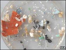 Sampah plastik di Samudera Atlantik