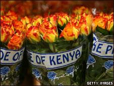 Flores de Kenia