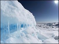 Es di kutub